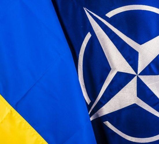 Ukraine as a NATO Centre of Excellence: Information Warfare